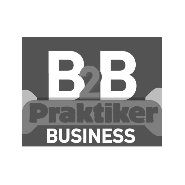 Praktiker Business
